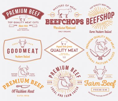 Quality beef meat colored