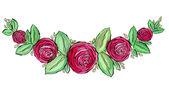 Fotografia Struttura del cerchio di bellissime rose dellacquerello