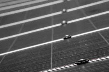 Solar Panel up Close