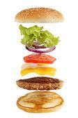 Fotografie Schematický nákres burger