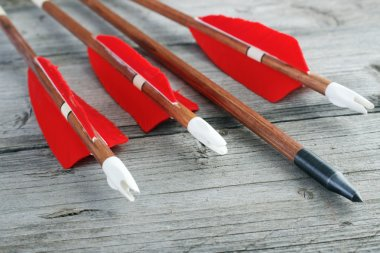 Wooden archery arrows with plastic nocks