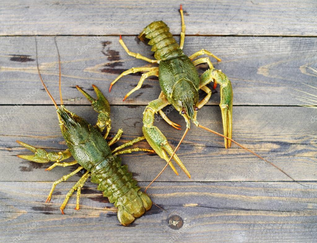 Live crayfish on a wooden surface of a table