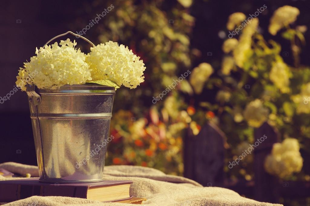 Flowers of a white hydrangea in a metal bucket with books on linen fabric. Still life with books and flowers in a summer sunny day in vintage tones