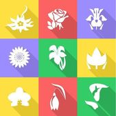 the flowers icons