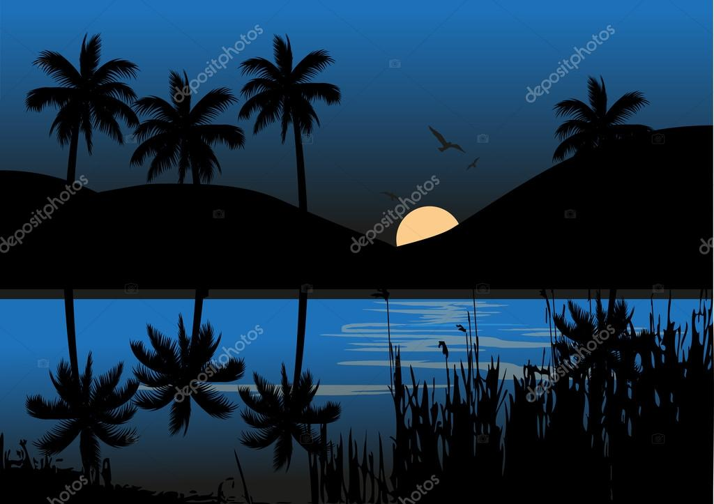 Exotic tropical night landscape with moonlit sky