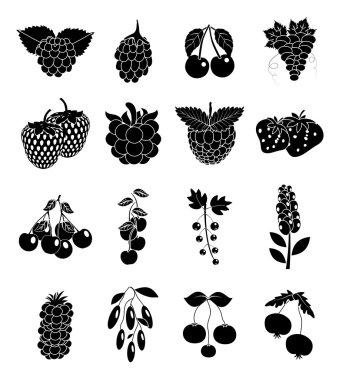 Berries icons set