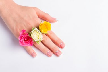Manicure with buds of colorful roses.
