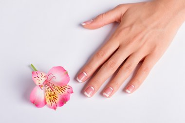 Gentle pink freesia with franch manicure.