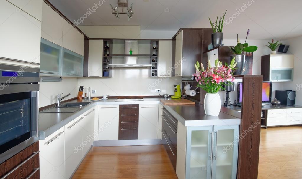 Інтер єр стильні кухні — Стокове фото — білий © vision.si  57240051 5aba84e665b8a