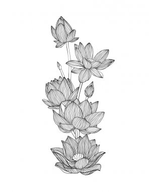 Engraving hand drawn illustration of lotus flower bouquet