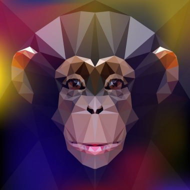 chimpanzee. face of a monkey.
