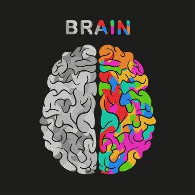 left and right brain hemisphere. Vector concept illustration.