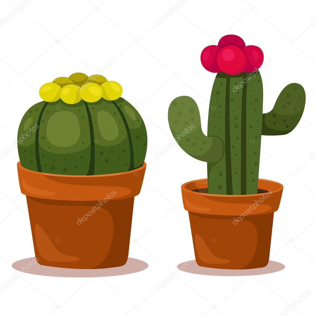 Illustrator of cactus