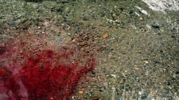 Spousta krve proudící v řece