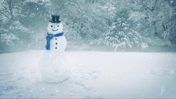 Sněhulák v husté sněžení