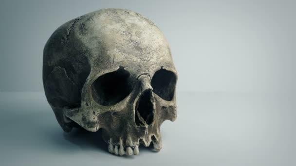 Totenkopf auf schlichtem Hintergrund