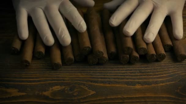 Cigars Laid Out At Tobacco Factory