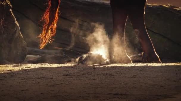 Kouřící kravského hnoje na chladné ráno