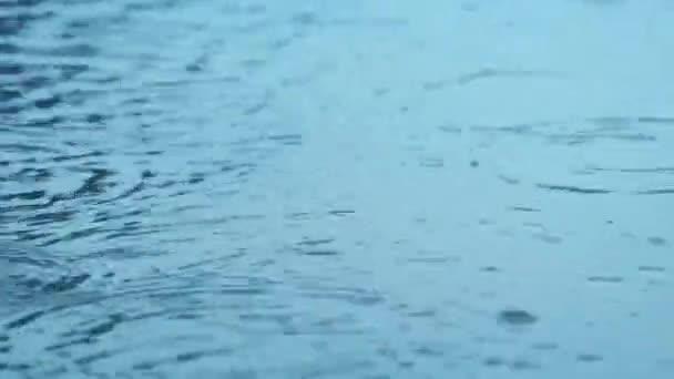 dešťové kapky na vodní hladině