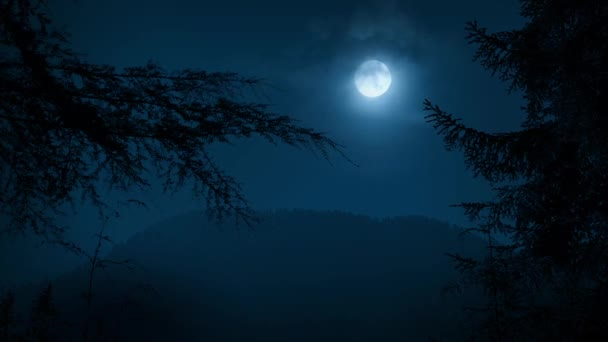 Stromy rámování noční Les s měsícem