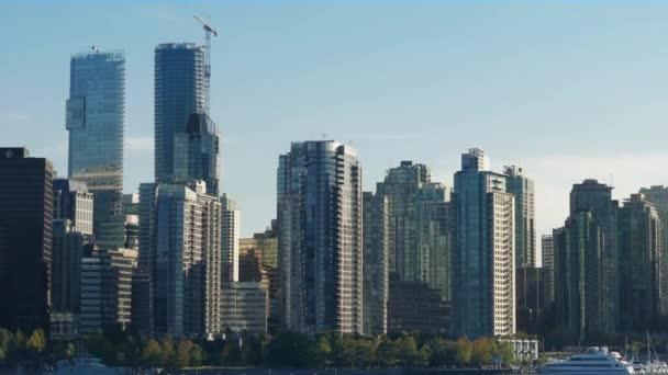 City Marina On Sunny Day Zoom Out