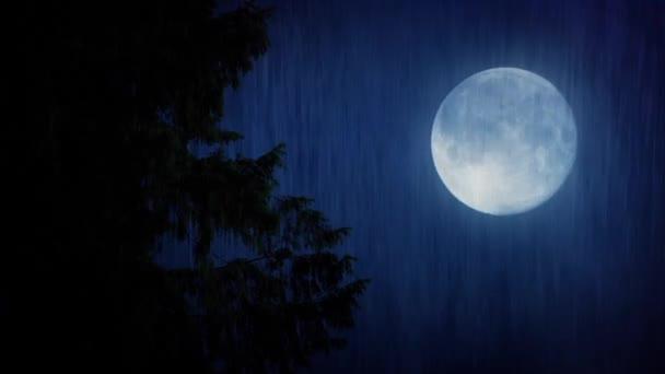 Hold és a heves esőzések fa