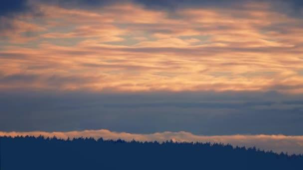 Schönen Sonnenuntergang über Wald Timelapse