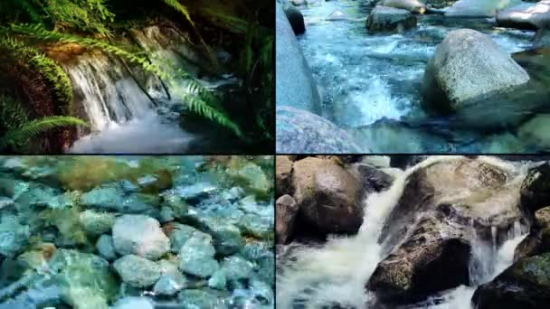 Rivers And Streams Montage
