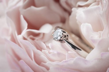 Diamond ring in a pink rose
