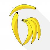 Bunch of bananas isolated on white. Letter of babanas.Vector illustration.