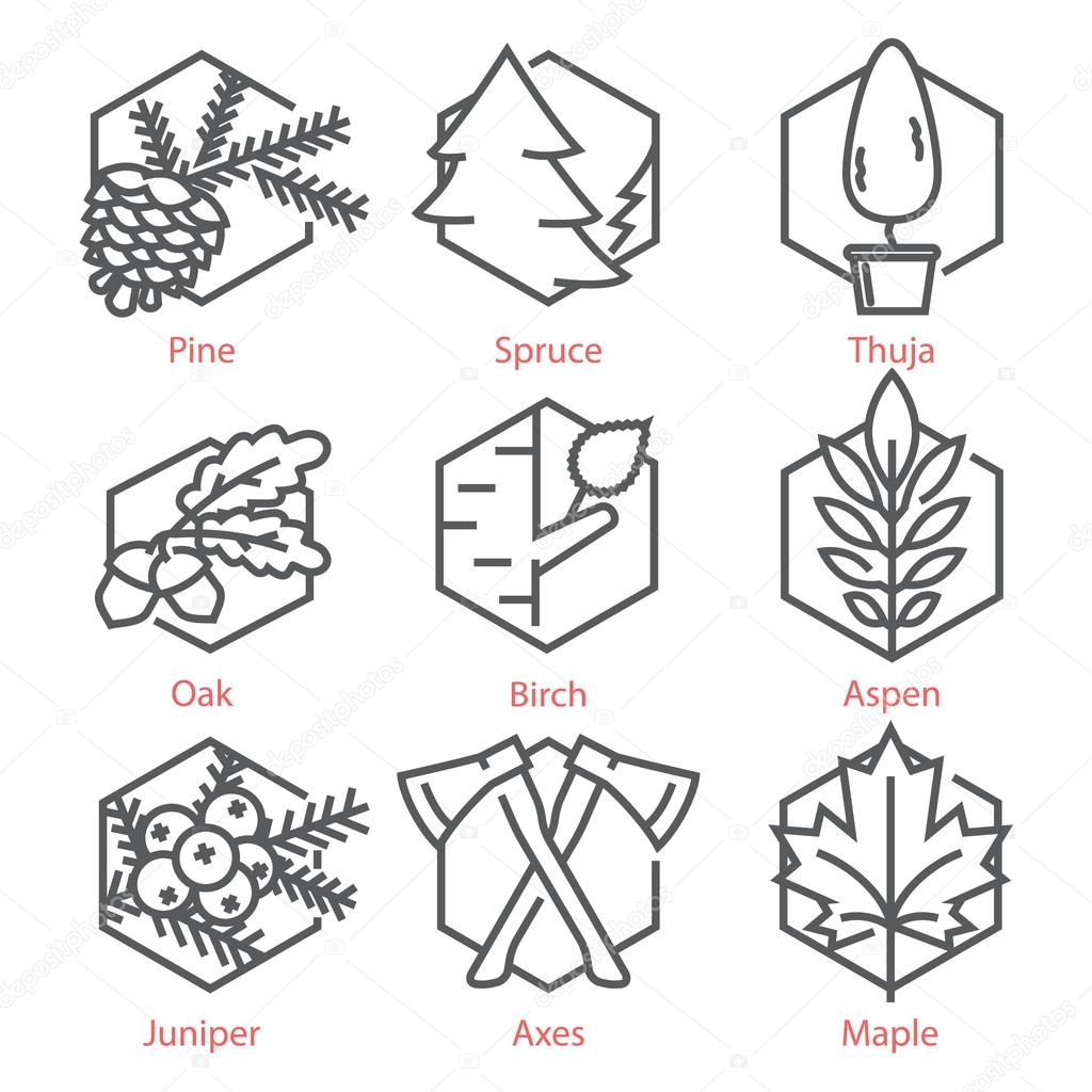 Vector thin line icons set with trees for nature and ecology in