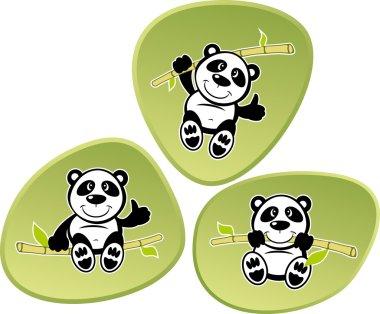 Cartoon animal Panda