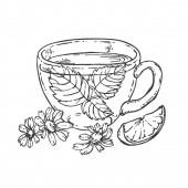 Hand drawn vector herbal tea cup with lemon