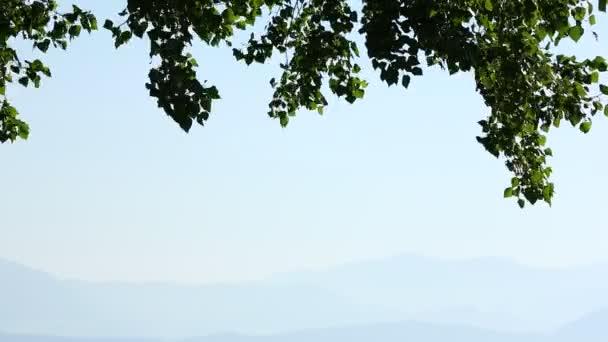 Light breeze on Lake Garda