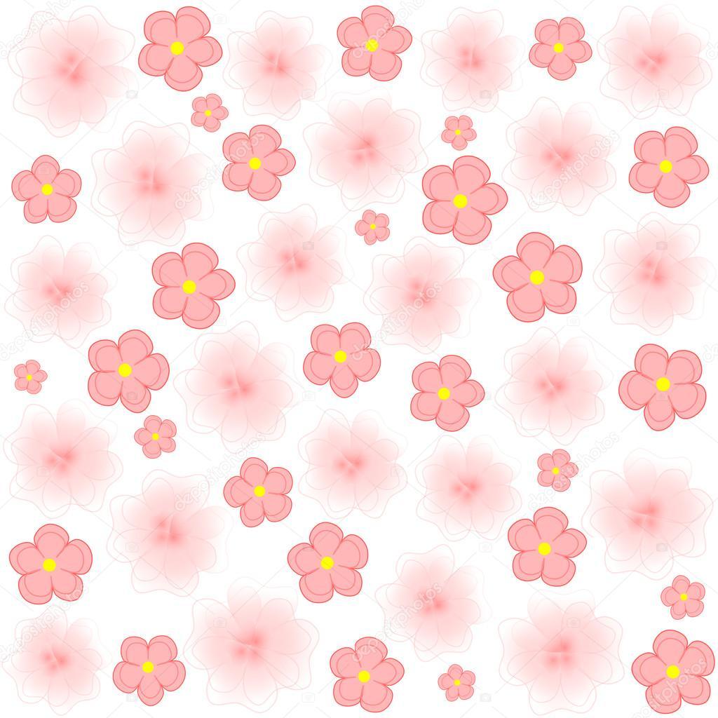 Luz Flores Rosa Sobre Fondo Blanco