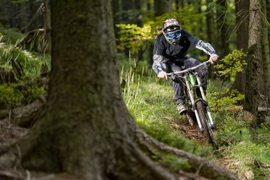 Mountainbiker Forest Bike Downhill