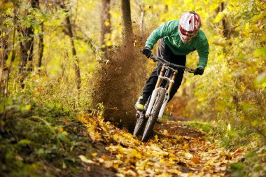 Mountain Bike Biker Forest Downhill Autumn