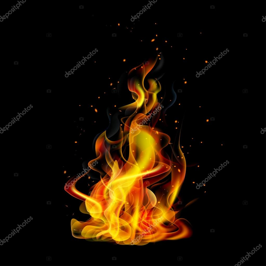 Realistic fire on a black background vector