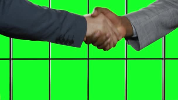 Handshake on background hromakey.