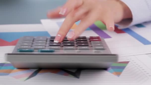 Experienced accountant conducts calculation.