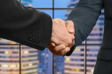 Adult caucasian businessmen shake hands.
