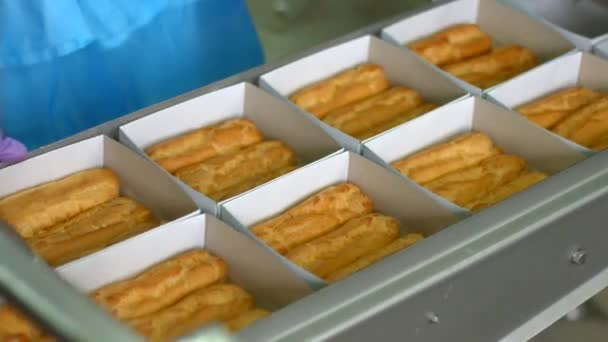 Boxes of eclairs on conveyor.