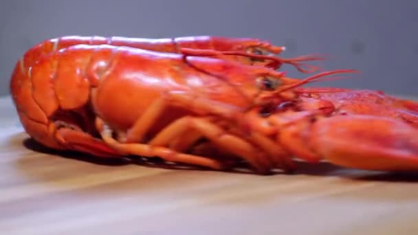 Lobsters in motion