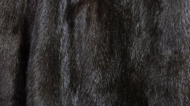 kožich kožich