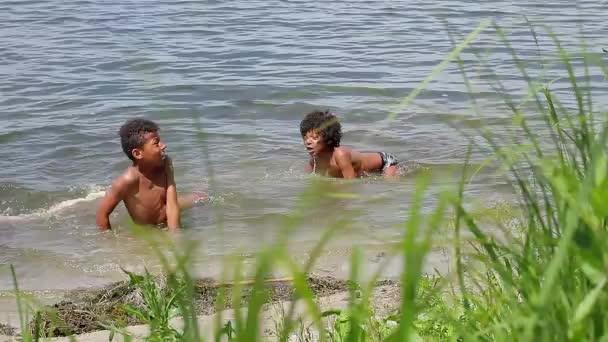 Two mulatto swimming.