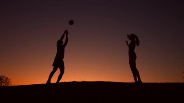 Figura di sagoma di giocatori di pallavolo