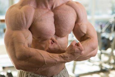 Strong mans torso.