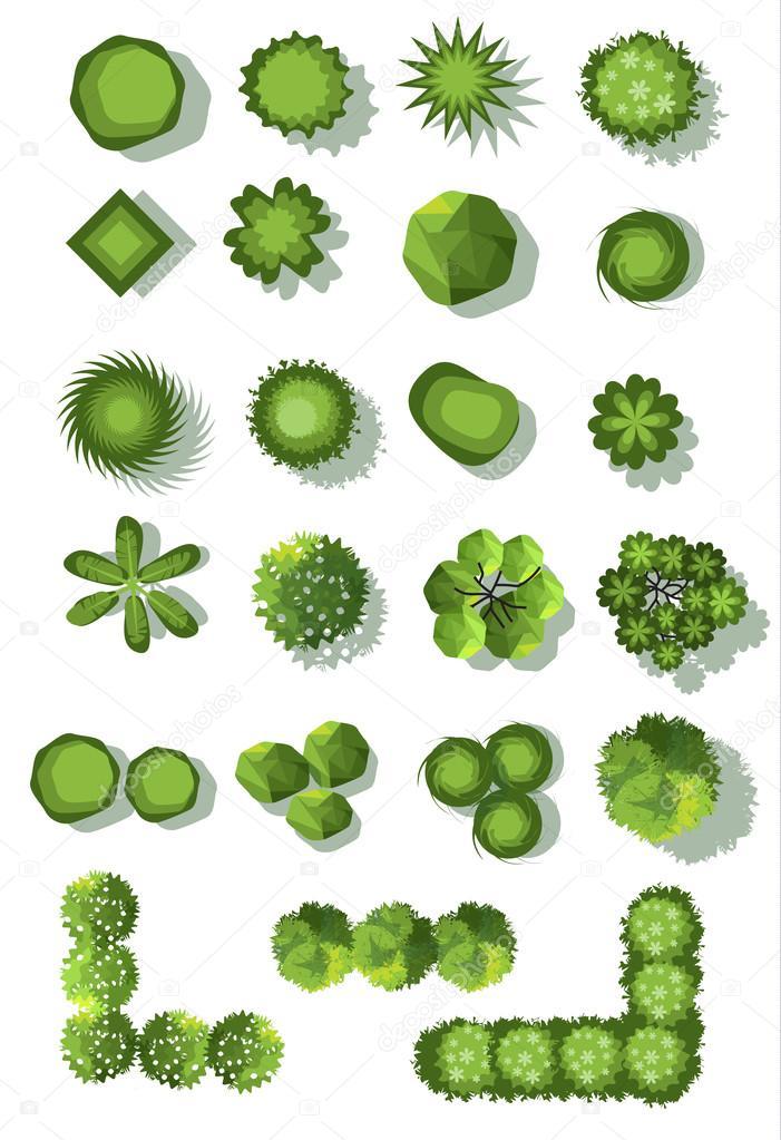 Set Of Treetop Symbols For Architectural Or Landscape Designctor