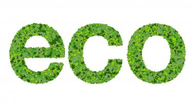 Word eco made from green leaves isolated on white background.