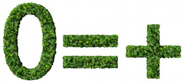Equals, plus, zero made from green leaves isolated on white background.